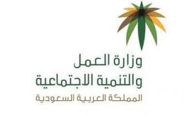 وزارة العمل والتنمية الاجتماعية تتيح خدمة التقرير الشهري عبر منصة