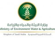 وزارة البيئة تطرح 168 وظيفة شاغرة للرجال