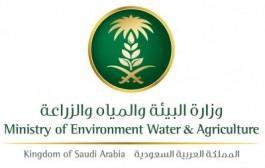 فرع وزارة البيئة بنجران ينظم ورشة عمل عن الزراعة العضوية بعد غدٍ الاربعاء