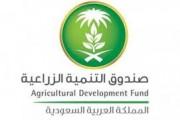 صندوق التنمية الزراعية يطلق خدمة استقبال طلبات تمويل المنشآت البيطرية إلكترونيًا