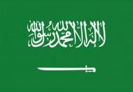 مصدر مسؤول ينفي المزاعم الواردة في بعض التقارير الصحفية المدعية استخدام جهة في المملكة برنامجًا لمتابعة الاتصالات