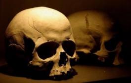جمجمة عمرها 200 ألف عام تعيد كتابة تاريخ الإنسان