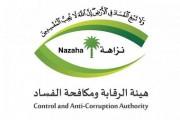 هيئة الرقابة ومكافحة الفساد تباشر (889) قضية جنائية وتأديبية