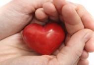 أفضل المواد الغذائية لصحة القلب