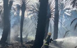 مدني نجران يخمد حريقاً في عدد من النخيل بحي الموفجة