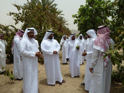 وفد اماراتي يزور بستنة نجران