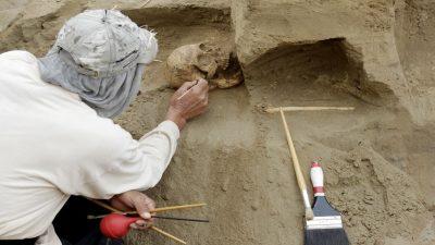 اكتشاف قبر