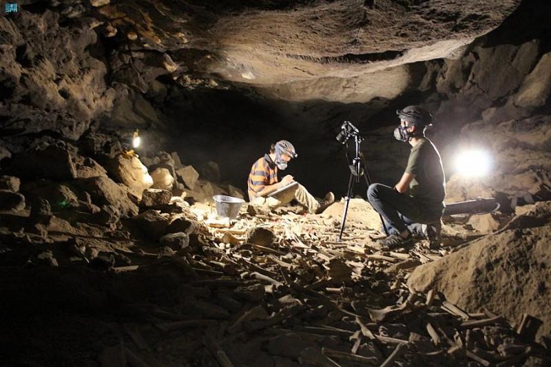 هيئة التراث تتوصل إلى اكتشاف جديد في كهف أم جرسان يعود إلى ما قبل 7000 سنة